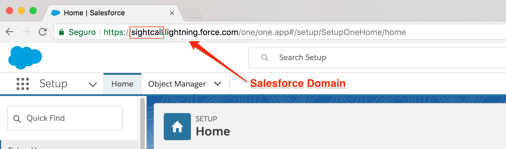 get_salesforce_domain.png